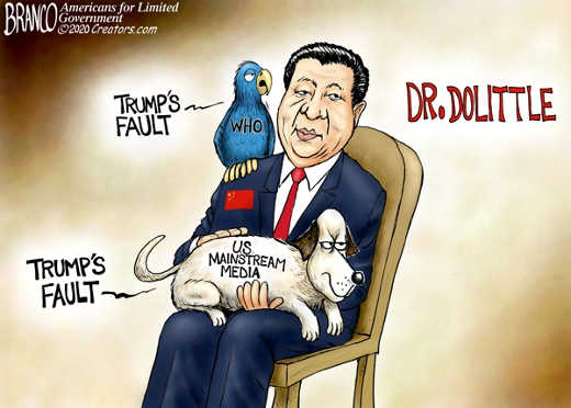 dr dolittle china who us mainstream media lapdog trumps fault