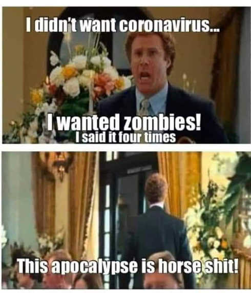 i didnt want coronavirus wanted zombies this apocalype is horse shit