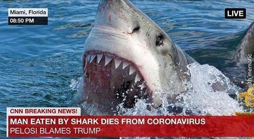man eaten by shark dies from coronavirus pelosi blames trump cnn