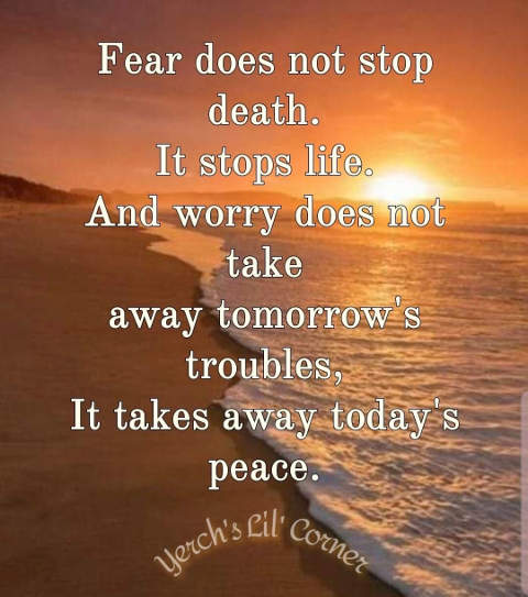 quote fear does not stop death stops life take away todays peace