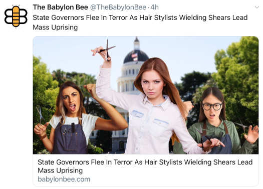 babylon bee state governors flee hair stylists shears