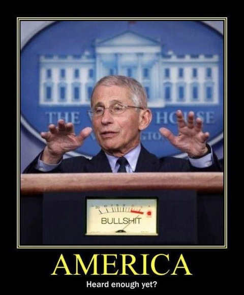 dr fauci america bullshit detector on high