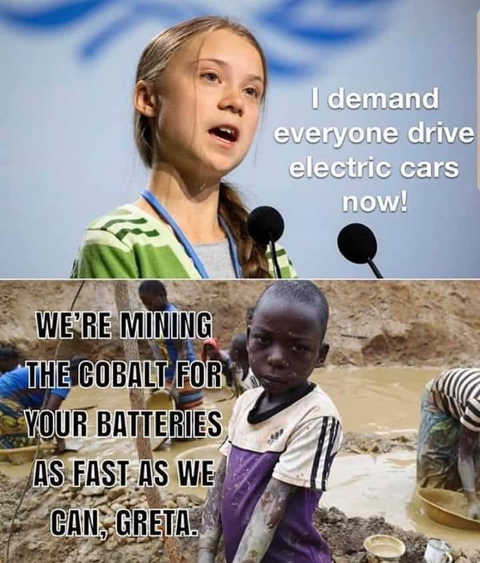 greta thunberg demand everyone drive electric cars kids africa mining cobalt fast as we can