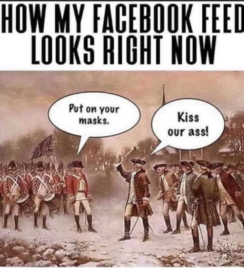 how my facebook feed looks right now put on masks kiss our ass