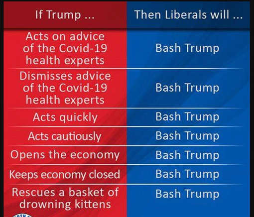 if trump acts on advice ignores quickly cautiously opens economy bash trump