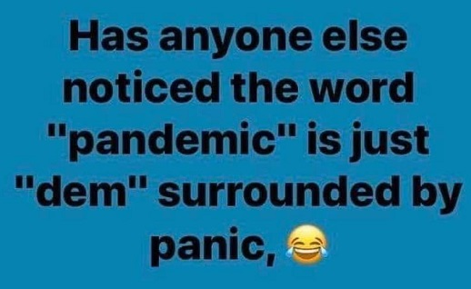 question has anyone else noticed word pandemic is just dem surrounded by panic