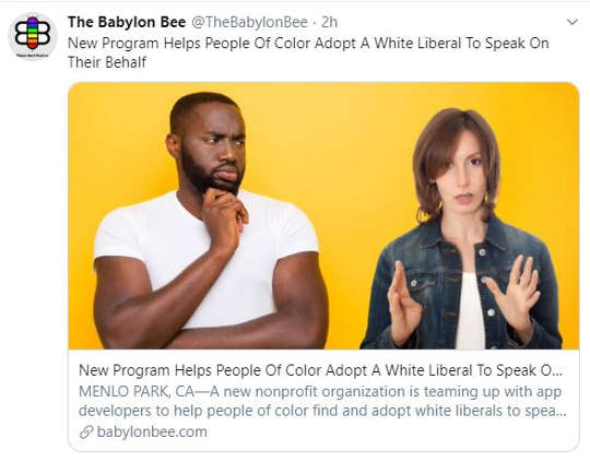 babylon bee new program helps people of color find white liberal to speak for them