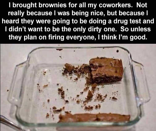 brought brownies coworkers drug testing unless plan on firing everyone