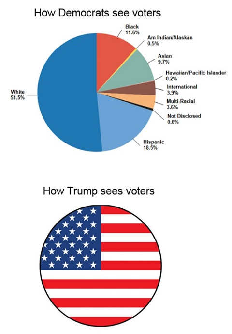 how trump sees voters americans how democrats see pie chart by race