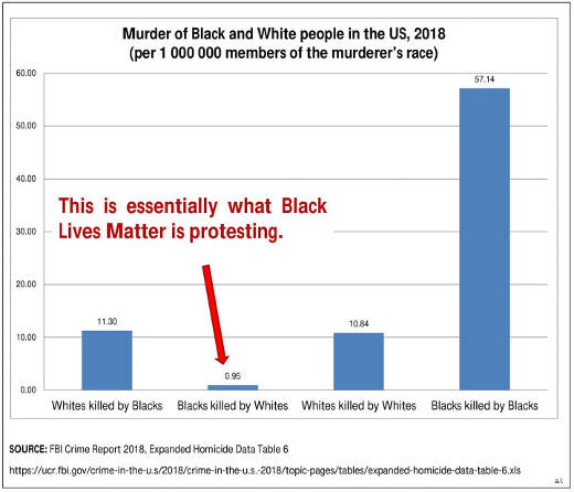 more you know fbi crime statistics blacks killed by whites what blm protecting