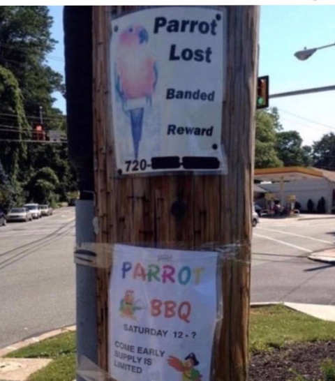 parrot lost sign bbq come early supplies limited