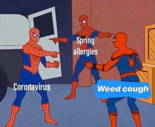 spiderman coronavirus spring allergies weed cough