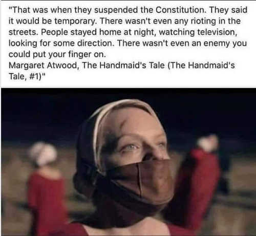 quote handmaids tale atwood that was when they suspended the constitution said it would be temporary