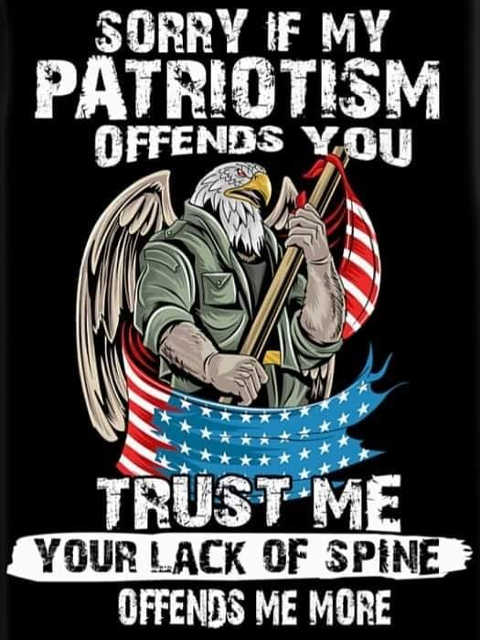 sorry if my patriotism offends you your lack of spine offends me more