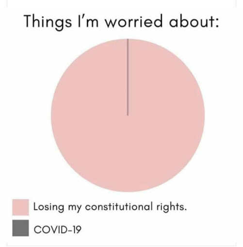 things im worried about losing constitutional rights covid 19 pie chart