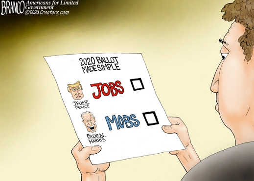 2020 ballot made simple trump jobs biden harris mobs