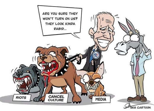 biden dogs riots cancel culture media democrats sure wont turn on us