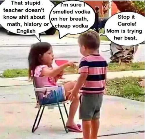 stupid teachers doesnt know shit about history english vodka mom is doing her best