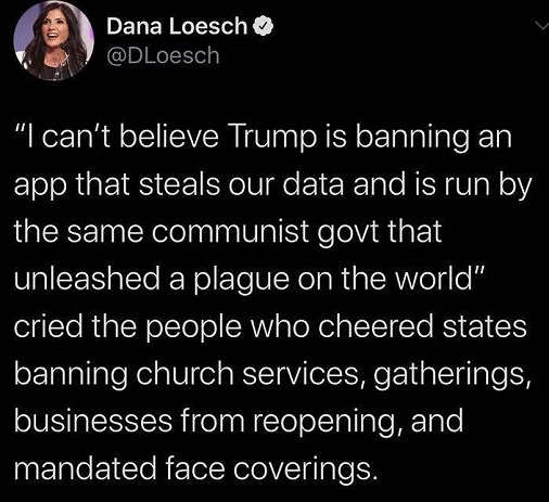 tweet dana loesch cant believe trump banning tik tok app steals data plaque same people banning everything