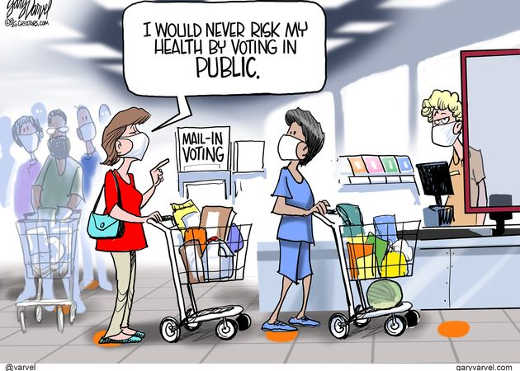 would never risk my health by voting in public line at grocery store