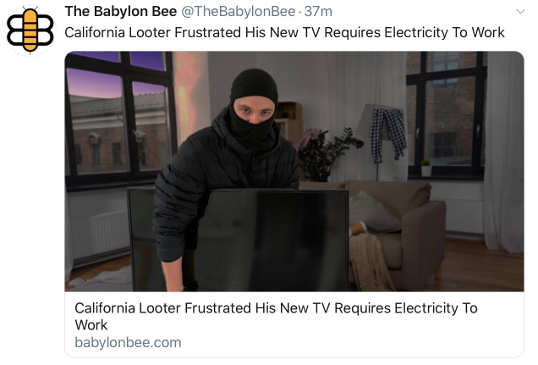 babylon bee looter frustrated tv requires electricity