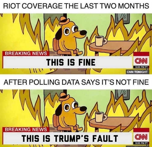 cnn riot coverage last two months this is fine dog after polling trumps fault