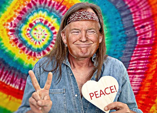 donald trump nobel peace prize hippee