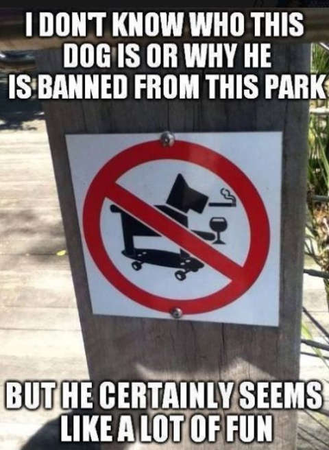 dont know who dog is sign why banned from park but seems like fun