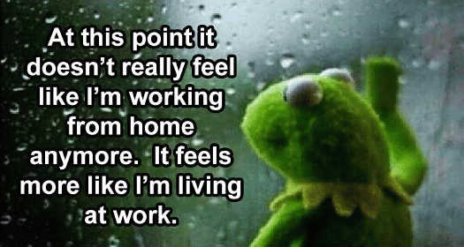 kermit at this point doesnt feel working from hom living at work