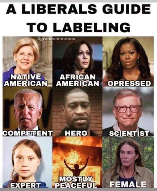 liberal guide to labeling biden warren obama bill gates mostly peaceful floyd