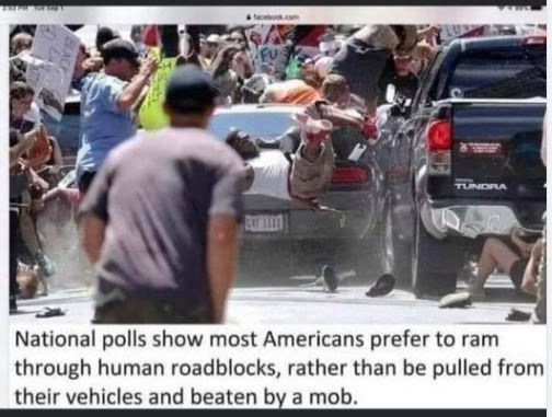 polls show americans rather run through mob rather than pulled from car beaten