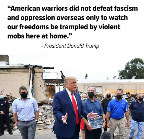 quote trump american warriors didnt defeat fascism to watch freedom be trampled by mobs at home