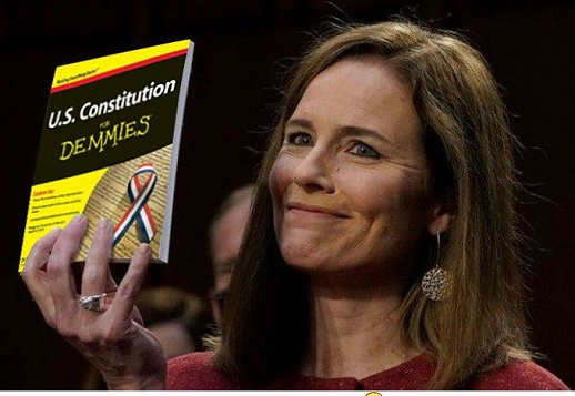 amy coney barrett holding up us constitution for democrats dummies