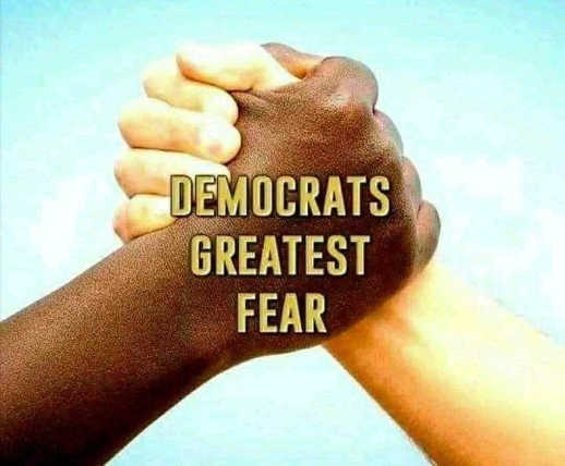 message democrats greatest fear black and white together