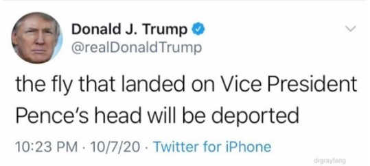 tweet donald trump fly landed on pence will be deported