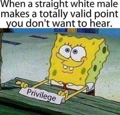 when straight white male makes point dont want to hear privilege
