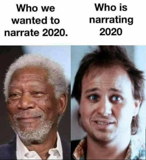 who we wanted narrate 2020 morgan freeman instead bobcat goldwait