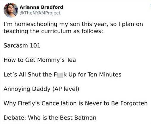 tweet arianna bradform homeschooling my son sarcasm shut the fuck up best batman