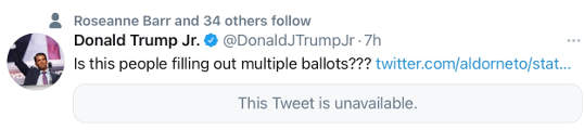 tweet donald trump jr people filling out multiple ballots twitter censored