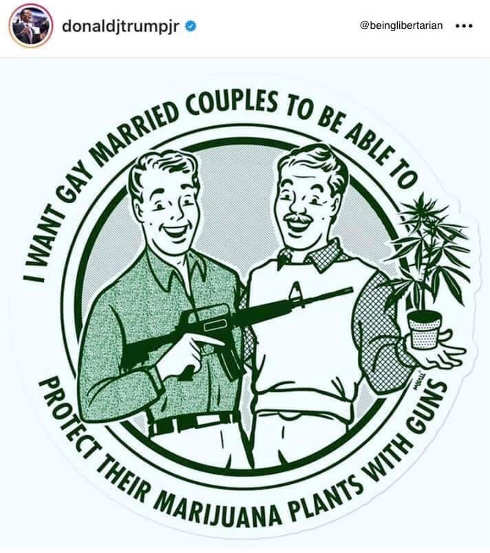 tweet donald trump jr want gay married couples able to protect marijuana plants with guns