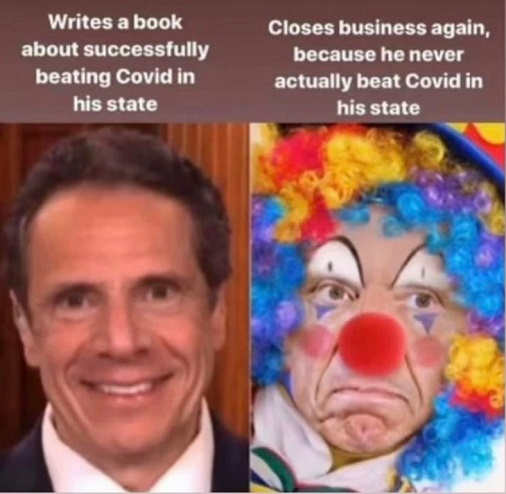 andrew cuomo writes book about successfully beating covid state closes business again never did
