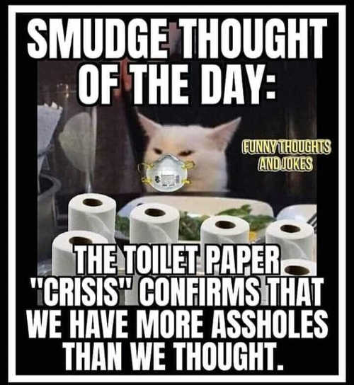 cat smudge thought of day toilet paper crisis more assholes than we thought