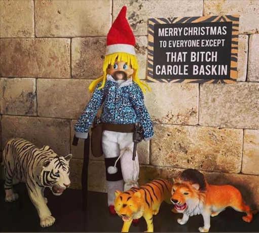 elf shelf tiger king bitch carole baskin