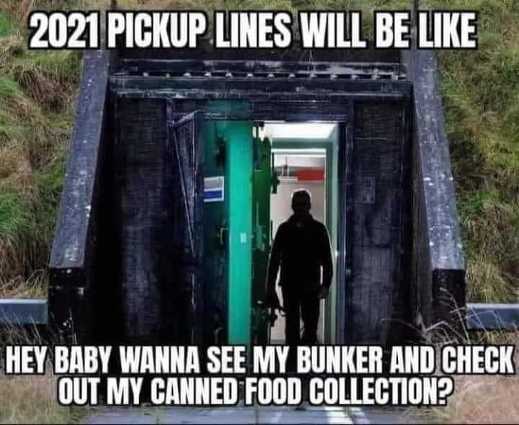 2021 pickup lines baby see my bunker and canned food collection