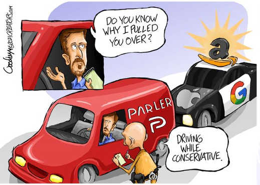 do you know why pulled over driving while conservative parler amazon google