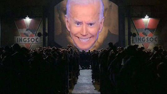 joe biden screen 984