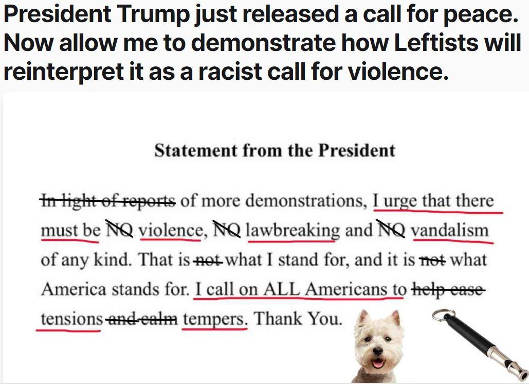 president trump call for peace as interpreted by left