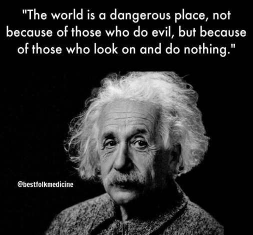 quote albert einstein world is dangerous people see do nothing