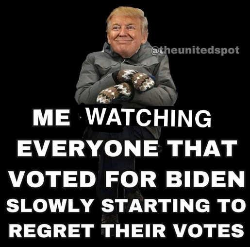 trump bernie mittens watching everyone voted for biden regret their votes