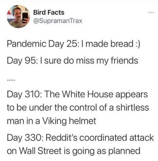 tweet bird facts pandemic reddit coordinated attack on wall street